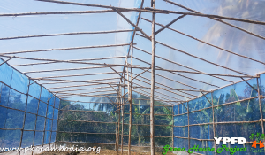 Greenhouse-07-Dec-2015-03