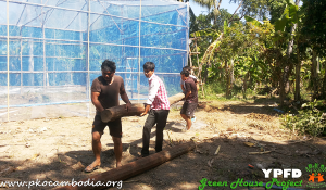 Greenhouse-07-Dec-2015-04